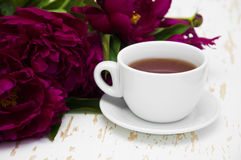 Peonies tea Stock Photo