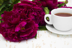 Peonies tea Stock Image