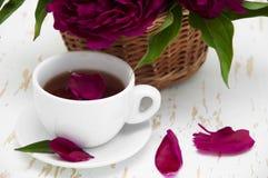 Peonies tea Stock Photos