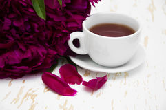 Peonies tea Stock Image