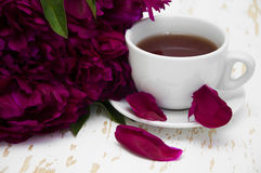 Peonies tea Royalty Free Stock Photo