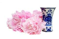 Peonies & Vase Royalty Free Stock Photos