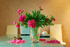 Peonies in a vase Royalty Free Stock Images