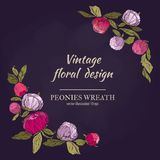 Peonies vector round frame. Pink, burgundy red and violet flowers wreath. stock illustration