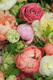 Peonies in a wedding arrangement Stock Image