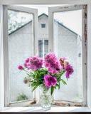 Peonies on windowsill Royalty Free Stock Images