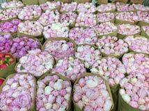 Peons som är till salu på blomman, marknadsför i Moskva, Ryssland fotografering för bildbyråer