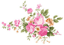 Peony. Drawing of beautiful peony and green leaves stock illustration