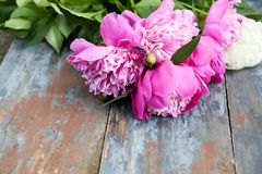 Peony background. Pink and peonies on wooden table with place for text. Spring flower peony. Happy Mothers Day. Mother& x27;s Day greetings card. Mothers Day stock images