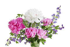 Peony and Baptisia Bouquet Stock Photos