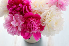 Peony. Beautiful peony bunch - flowers and plants stock images