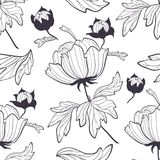 Peony flower seamless pattern colorful illustration. Peony blooming flower with fresh bud seamless pattern colorful illustration on white background Stock Photography