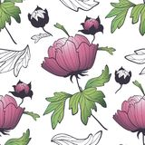 Peony blooming fresh flower seamless pattern colorful illustration. Peony blooming flower with fresh bud seamless pattern colorful illustration on white Royalty Free Stock Photography