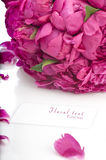 Peony bouquet Stock Photography