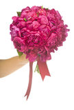 Peony bouquet Royalty Free Stock Photography