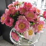 Peony Bouquet Royalty Free Stock Photo