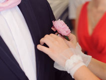 Peony Boutonniere Royalty Free Stock Photography