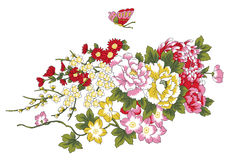 Peony,cherry and butterfly. Illustration drawing of beautiful flowers and butterfly Royalty Free Stock Photos
