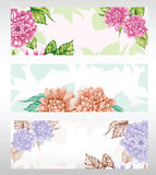 Peony  design Stock Photo