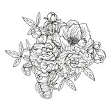 Peony floral bouquet Royalty Free Stock Images