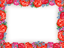 Peony Floral Frame Stock Photo