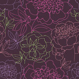 Peony floral sketch. spring flower vector Stock Image