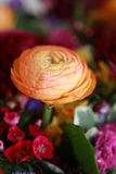Peony flower. Beautiful yellow peony flower in a bouquet Stock Photos