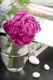Peony flower boquet Royalty Free Stock Photos