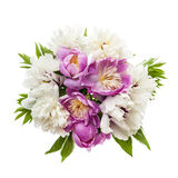 Peony flower bouquet isolated Royalty Free Stock Photo
