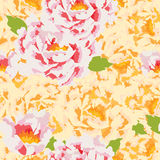 Peony flower full seamless pattern Stock Images