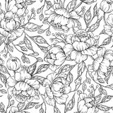 Peony flower seamless pattern drawing. Vector hand drawn engrave. D floral background with botanical rose, leaves and berry. Black ink sketch. Great for stock illustration