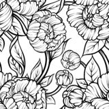 Peony flower seamless pattern line drawing. Vector hand drawn engraved floral background Black ink sketch. Great for invitation. Card, fabric, print and vector illustration