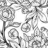 Peony flower seamless pattern line drawing. Vector hand drawn engraved floral background Black ink sketch. Great for invitation. Card, fabric, print and stock illustration