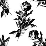 Peony flower silhouette seamless pattern. Hand drawn leaf silhouettes with scribble textures. Natural elements in pastel shades and colors. Vector grunge Royalty Free Stock Photo