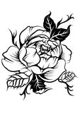 Peony flower in tatto style Stock Images