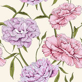Peony flower. Thais is illustration of flower pattern seamless Royalty Free Stock Photo