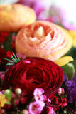 Peony flowers. Beautiful red and yellow peony flowers in a bouquet Stock Image