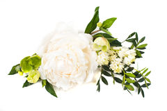 Peony flowers arrangement on white background isolated. Festive. Beautiful peony flowers arrangement on white background isolated. Festive wedding floral royalty free stock images