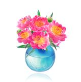 Peony Flowers Bouquet in Vase Royalty Free Stock Photos