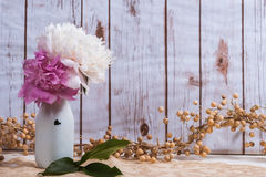 Peony flowers in a milk bottle with wood background Royalty Free Stock Photography