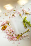 Peony flowers and  Peony petals on envloper Stock Images