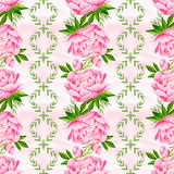 Peony flowers seamless pattern background. Tender pink flowers. Wedding design. Watercolor illustration Stock Image