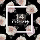Peony Flowers. Square frame. 14 february. Happy valentines day Royalty Free Stock Image