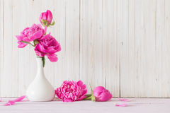 Peony flowers in  vase Stock Images