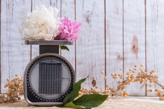 Peony flowers on a vintage scale Stock Photography