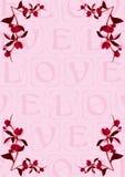 Peony love buds Stock Image