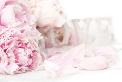 Peony and Love. Shabby chic background Stock Photos