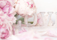 Peony and Love. Shabby chic background Royalty Free Stock Photos