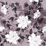 Peony pattern Royalty Free Stock Photos