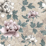 Peony pattern Stock Images